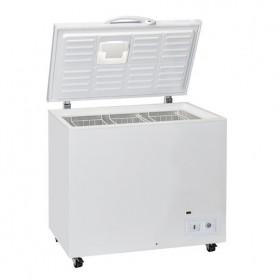 Refrigeratore a Pozzetto - 290 Litri [+1 +10 C°]