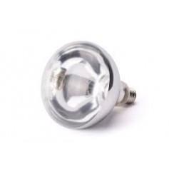 Bulbo per Lampada Riscaldante - 250 Watt